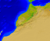 Morocco Vegetation 800x654