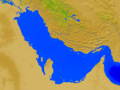 Persian Gulf Vegetation 1600x1200