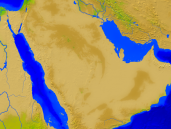 Saudi Arabia Vegetation 1600x1200
