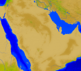 Saudi Arabia Vegetation 4000x3503