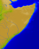 Somalia Vegetation 1900x2400