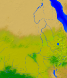 Sudan Vegetation 1356x1600